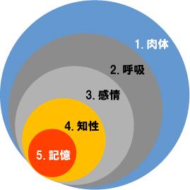 人間五蔵説